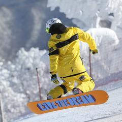 Deposito sci e snowboard Lione