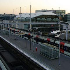 Consigna equipaje en la Gare Massy TGV Estación